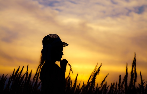 Picture field, the sky, sunset, the evening, hat, girl, child