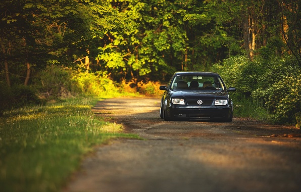 Picture forest, volkswagen, before, red, alley, Volkswagen, jetta, MK4