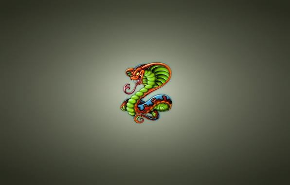 Picture snake, minimalism, Cobra, snake, cobra