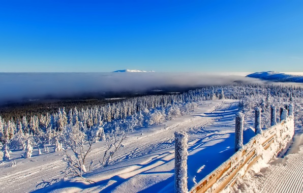 Picture winter, forest, the sky, clouds, snow, trees, mountains, the fence, horizon
