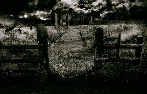 Picture forest, night, fog, house, skull, Raven