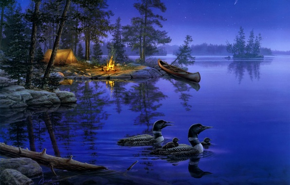 Picture forest, night, nature, lake, fire, boat, star, duck, stars, the fire, tent, painting, the fire, …