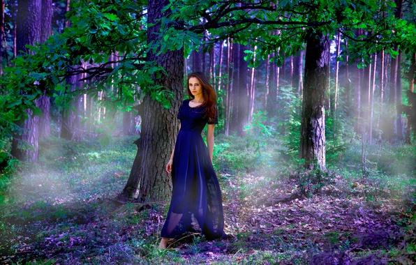 Picture Purple, Wood, Model, Nastya, Dress, Leaves, Mystery
