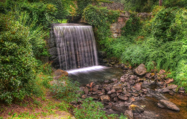 Picture forest, trees, Park, stones, waterfall, stream, hdr