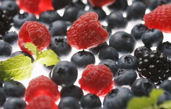 Picture macro, berries, raspberry, blueberries, BlackBerry