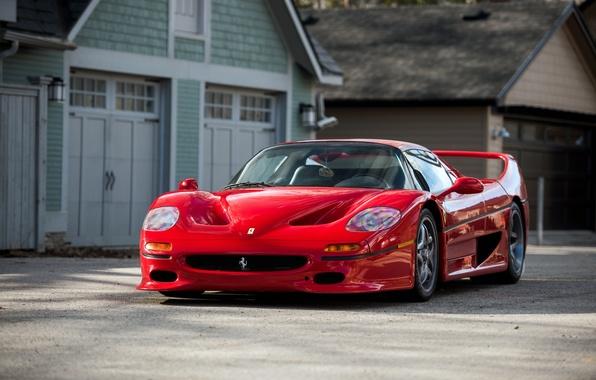 Picture Ferrari, supercar, Ferrari, 1995, F50