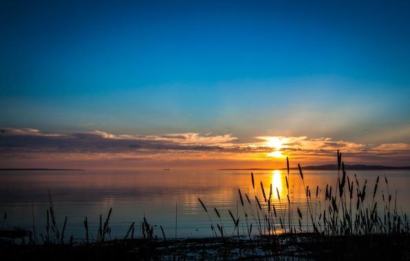 Picture the sky, grass, sunset, nature, river, photo, dawn, coast, Australia, South Australia, Port Lincoln