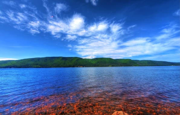 Picture sea, forest, the sky, clouds, mountains, stones, color