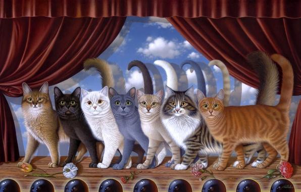 Picture cats, scene, art, speech, Braldt Bralds