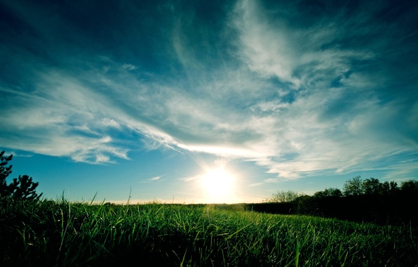 Picture the sky, grass, clouds, sunset, blue, green
