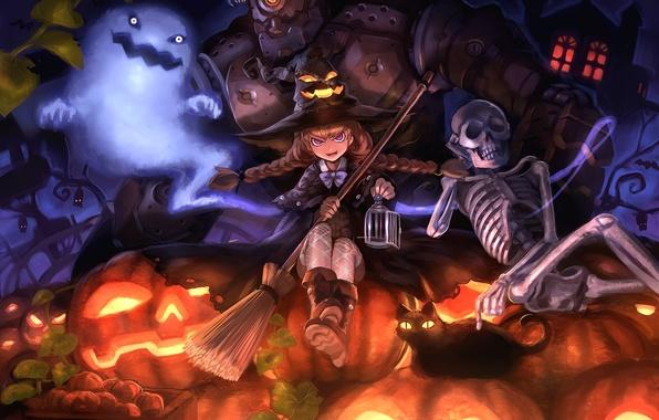Picture cat, cat, hat, cast, art, skeleton, girl, pumpkin, Halloween, Halloween, witch, broom, Golem, damin