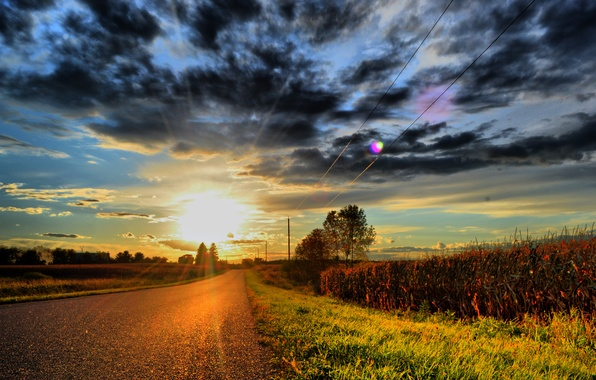 Picture road, grass, the sun, clouds, sunset, clouds, power lines