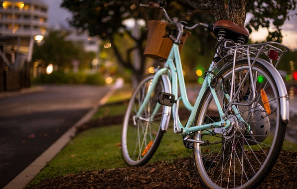 Picture Bike, Bokeh, Bicycle Love