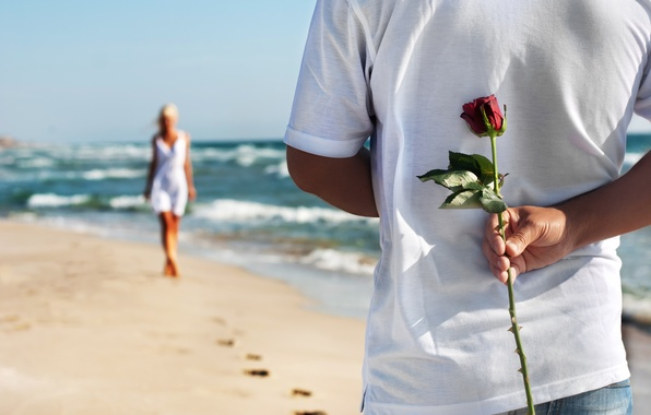 Picture sand, sea, beach, love, pair, love, rose, happy, people, romantic, couple