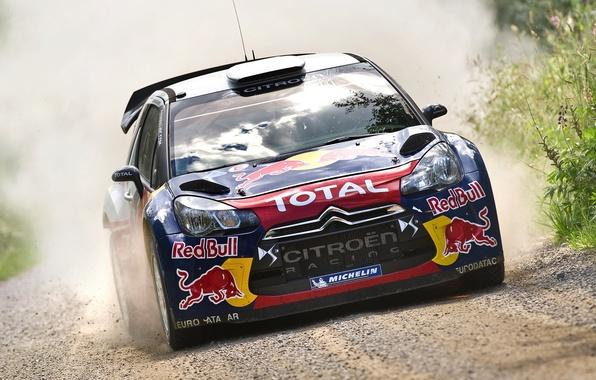 Picture Auto, Sport, Machine, Race, Citroen, The hood, Citroen, Lights, Red Bull, DS3, WRC, Rally, Rally, …