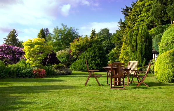 Picture photo, Nature, Trees, The bushes, Park, Lawn, Chairs