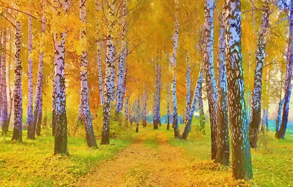 Picture road, autumn, grass, leaves, trees, landscape, picture, birch