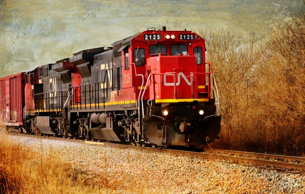 Picture style, background, train
