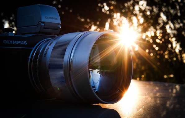 Picture the camera, lens, Olympus, Olympus