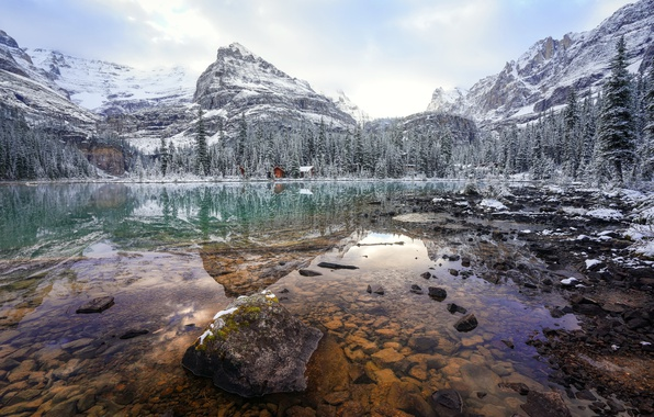 Picture landscape, nature, Lake O'Hara, wintery morning