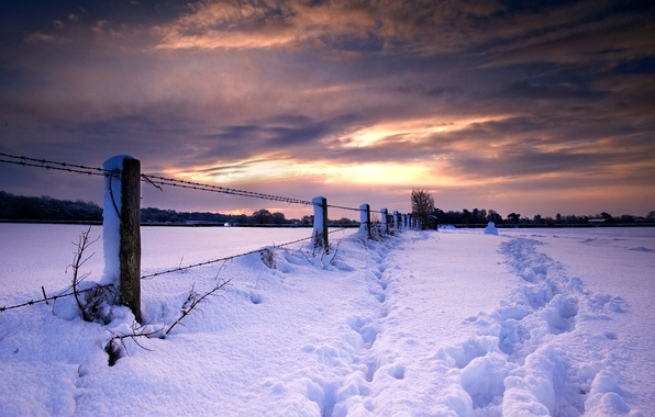 Picture winter, snow, sunset, traces, nature, the fence