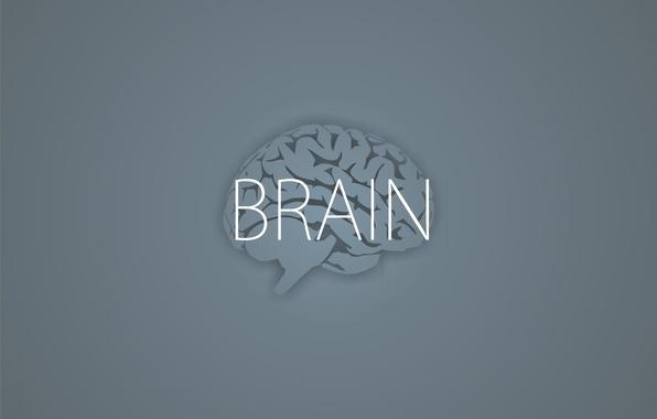 Picture the inscription, minimalism, grey background, Brain, brains