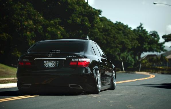 Picture Lexus, black, LS460, rear, VIP