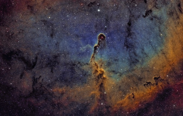 Picture space, Nebula, Tsefey, in the constellation, Elephant trunk