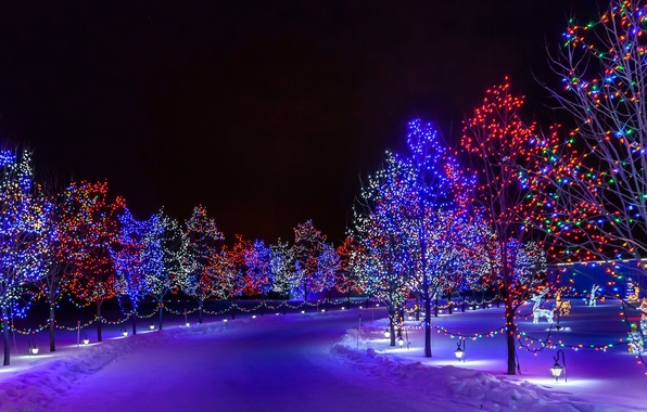 Picture winter, road, snow, trees, night, the city, Park, holiday, New Year, illumination