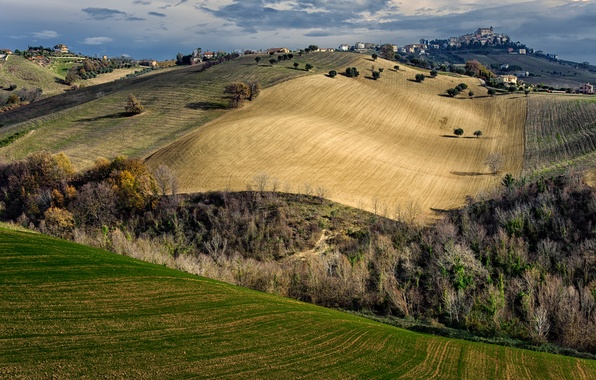 Picture autumn, the sky, trees, the city, hills, field, home, Italy