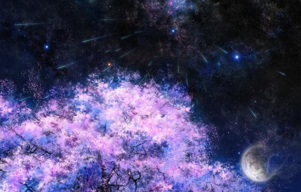 Picture space, stars, night, tree, the moon, Sakura, art, tsujiki