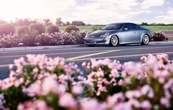 Picture Infiniti, silvery, G-Series, G35