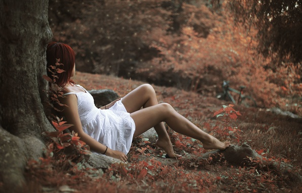 Picture autumn, leaves, girl, pose, tree, foliage, red