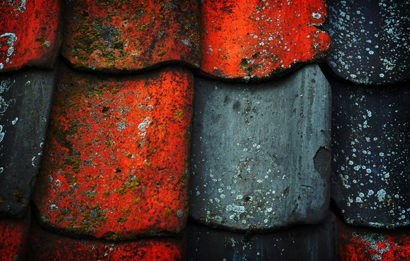 Picture roof, paint, black, texture, red, old, mold, Tile