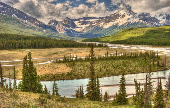 Picture forest, the sky, clouds, trees, mountains, river, valley, Canada, Alberta, Canada, Banff national park, Howse …