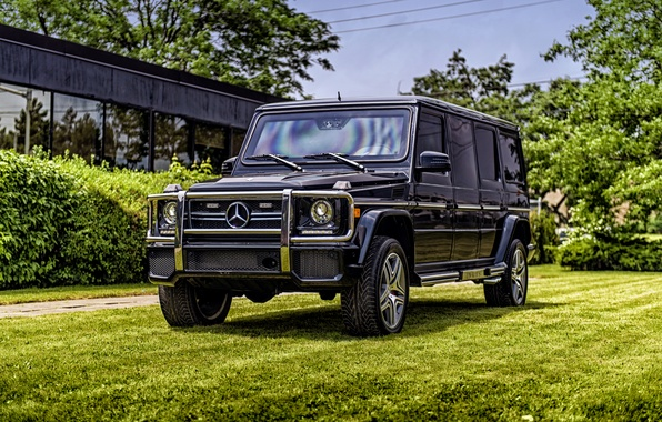 Picture Mercedes-Benz, Mercedes, AMG, g, G-Class, W463, Inkas