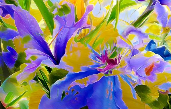 Picture leaves, flowers, nature, rendering, petals, flowerbed