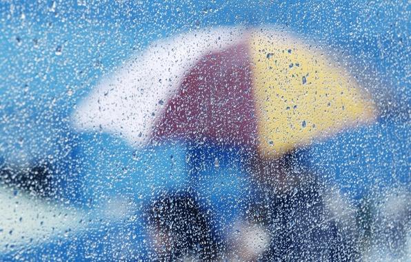 Picture glass, drops, umbrella, background, Wallpaper, different, water. rain
