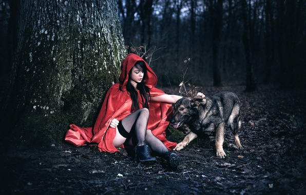Picture forest, girl, tree, dog, legs, cloak, Arya, Laurent KC