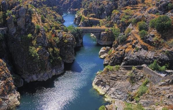 Picture trees, bridge, river, rocks