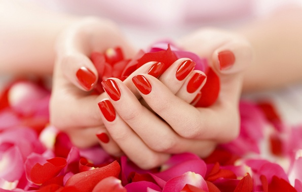 Photo Wallpaper Hands Petals Gently Manicure Red Nail Polish