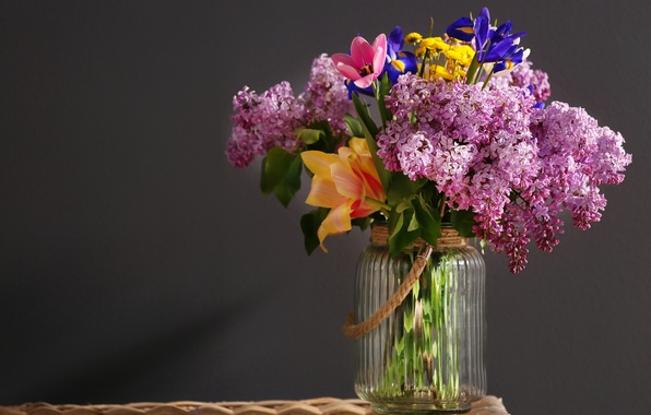 Picture flowers, background, Bank, lilac