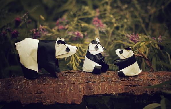Picture flowers, branch, Panda, origami, Panda family