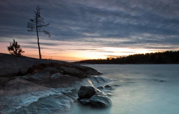 Picture landscape, night, nature, lake, stones, tree