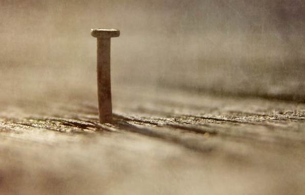 Photo wallpaper nail, macro, background