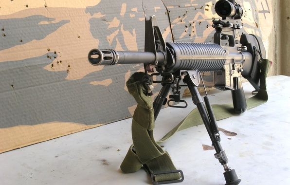 Picture weapons, optics, strap, cardboard, sniper rifle