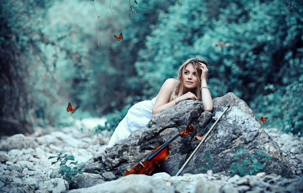 Picture girl, violin, bow, Butterflies, Alessandro Di Cicco
