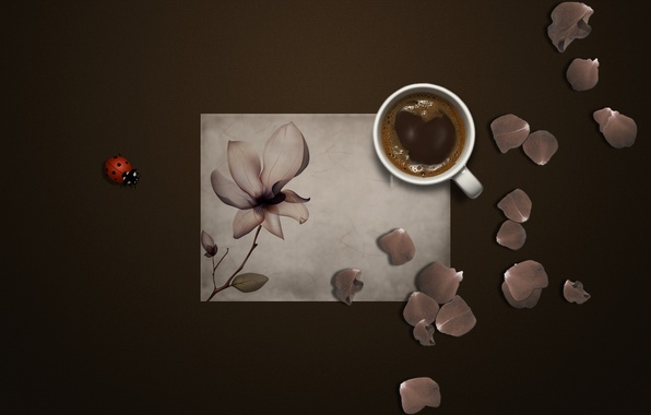 Picture flower, paper, background, ladybug, coffee, petals, mug, insect