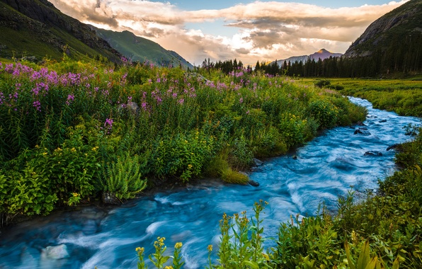 Picture summer, landscape, sunset, flowers, mountains, river, Colorado, USA