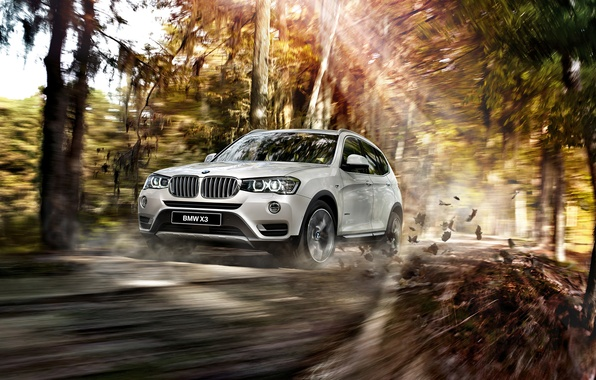 Picture BMW, BMW, 2015, F25